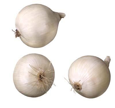 onions-health